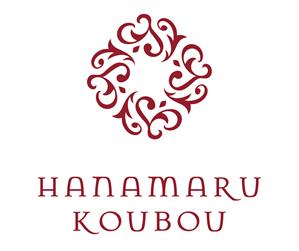 logo_vr1